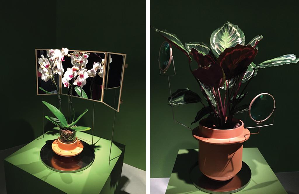 Nature Made - Salon Maison & Objet Paris 2015