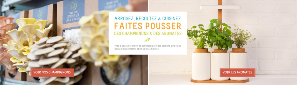Tendance food : les start-ups s'en mêlent