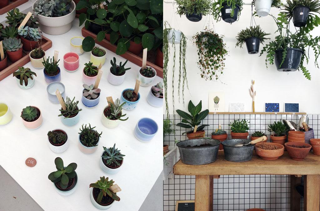 LEAF, le shop végétal au croisement du design, de l'artisanat et du végétal